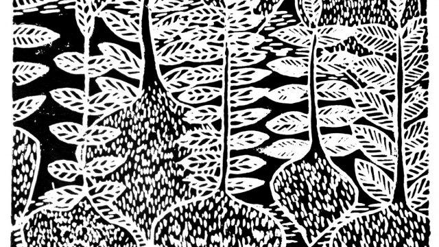linosnitt svart hvitt bilde løk
