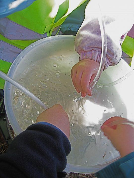 Barn holder plastslanger ned i en bøtte med vann.