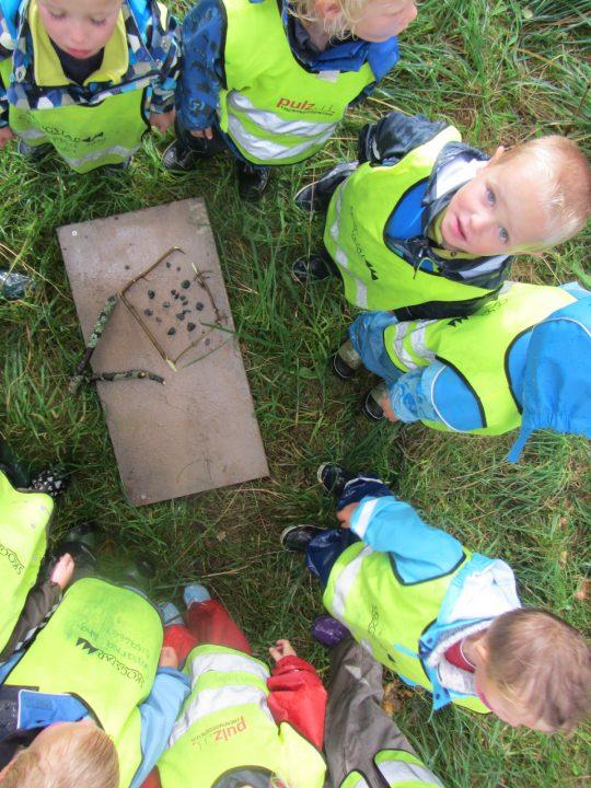 Barn står rundt et bilde de har laget av pinner og bær ute i naturen.