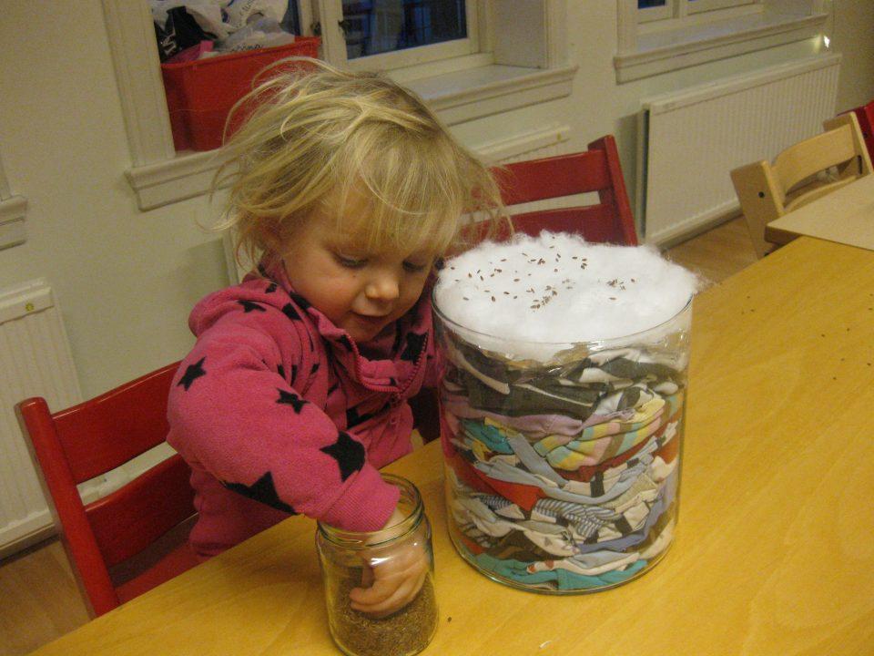 Barn sår gressfrø på tekstil som ligger i en gjennomsiktig vase.