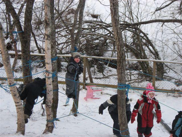 Barn som klatrer og balanserer på naturlekeplass laget av tau mellom trær i skogen.