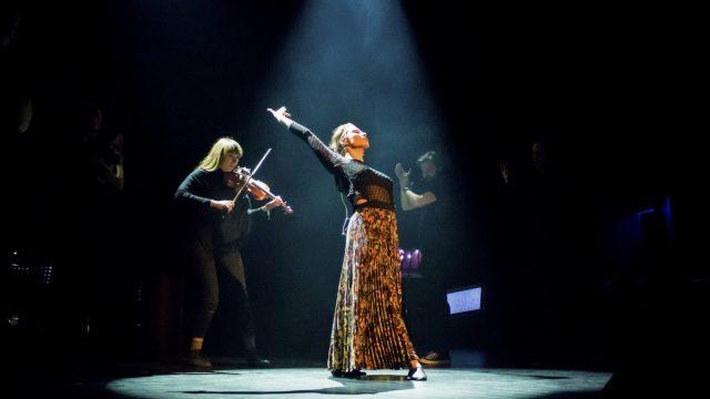Dissimilis en dame på scenen