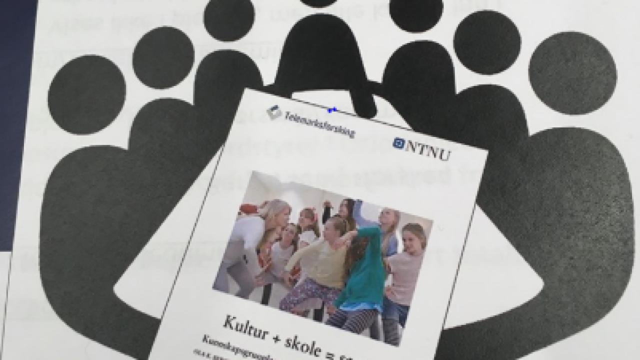 rapport Kultur + skole = sant