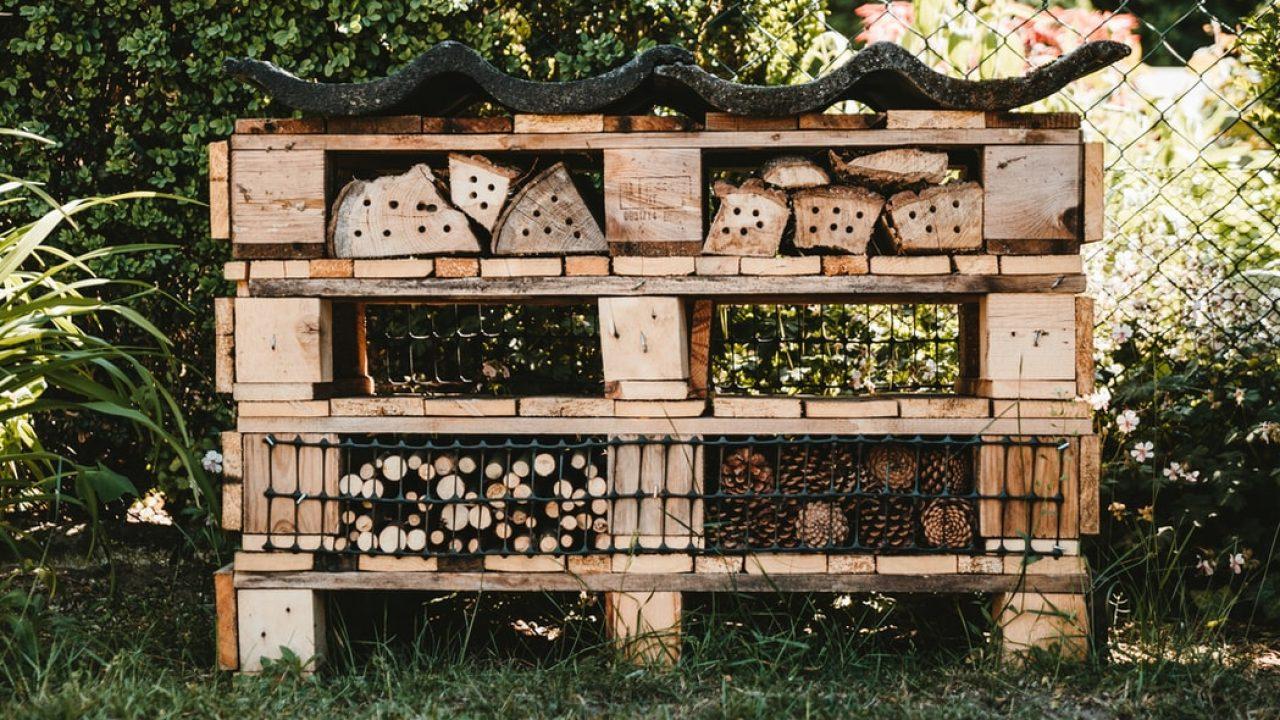 Europaller, ved og netting gjort om til insektshotell