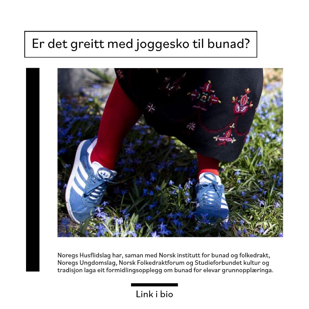 """Denne lenken leder til nyhetssaken om """"Bunadbruk.no""""."""